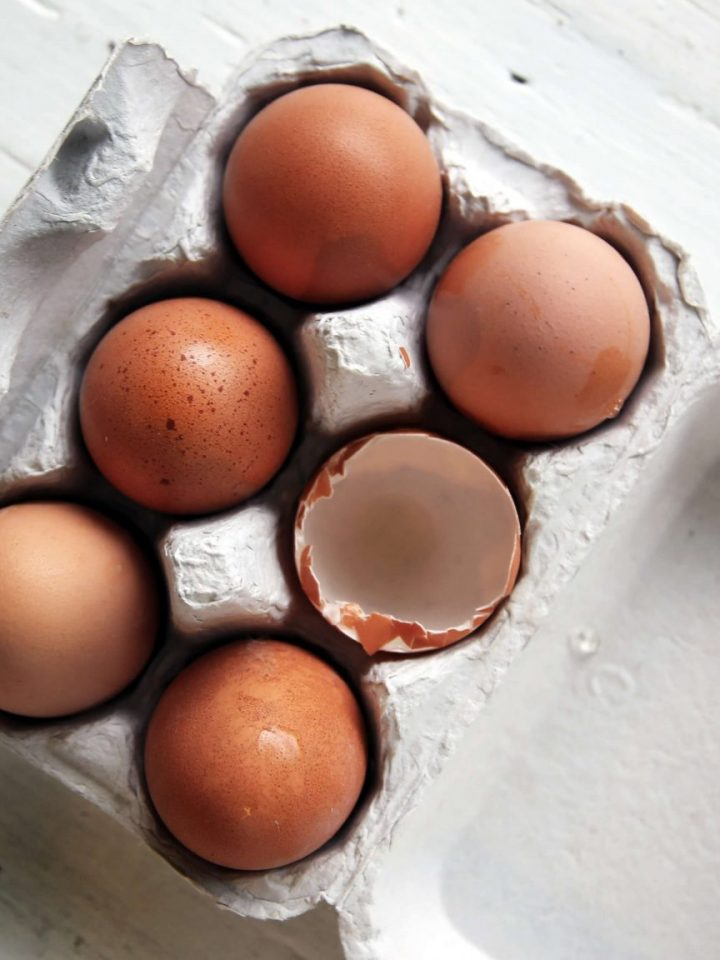Protein - the building blocks of the body - eggs