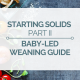 baby-led weaning guide