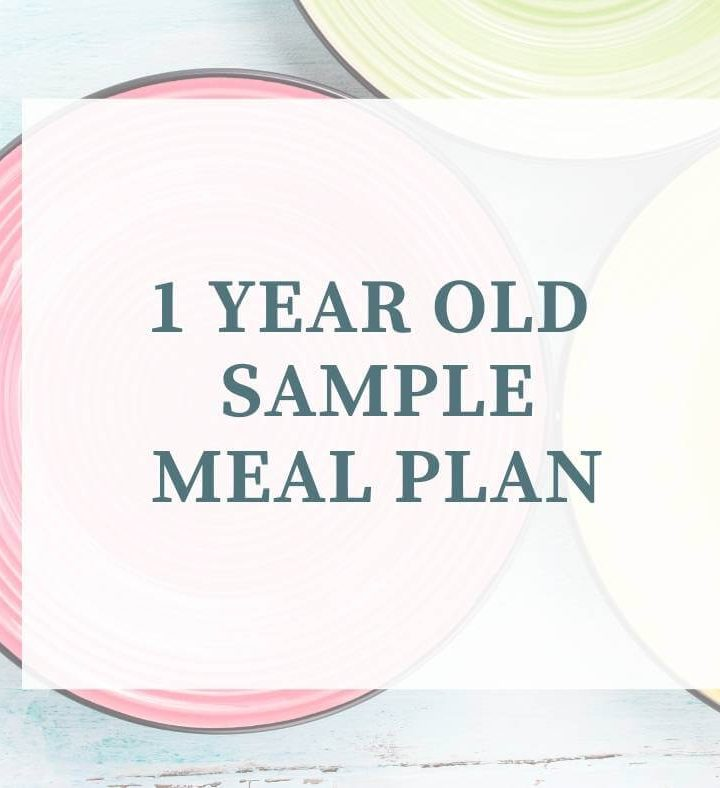 1 year old meal plan