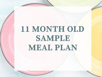 11 month old meal plan