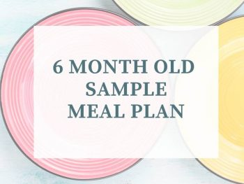 6 month old meal plan