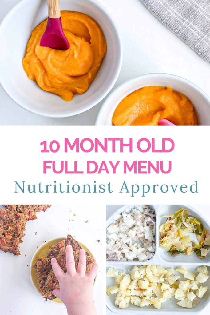 10 Month Old Meal Plan