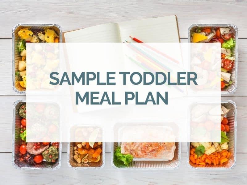 Sample Toddler Meal Plan
