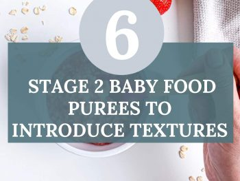 stage 2 baby purees
