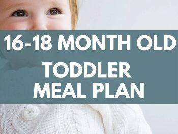 16-18 month old toddler meal plan