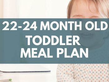 22-24 month old toddler meal plan