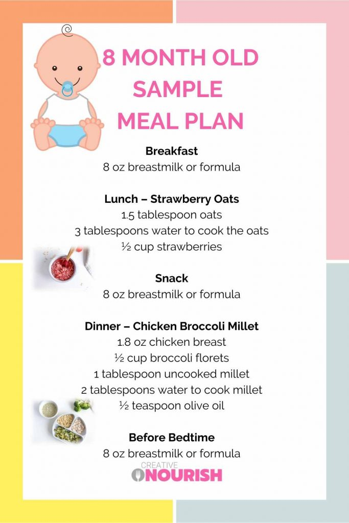 meal plan infographic