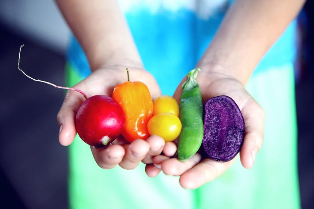 Hands holding small vegetables